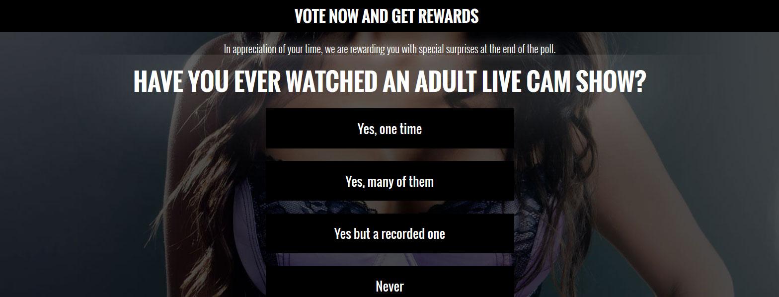 Web Cam Porn Survey