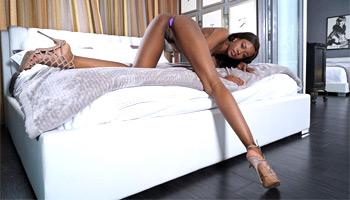 Jezabel Vessir ebony porn star - InTheCrack